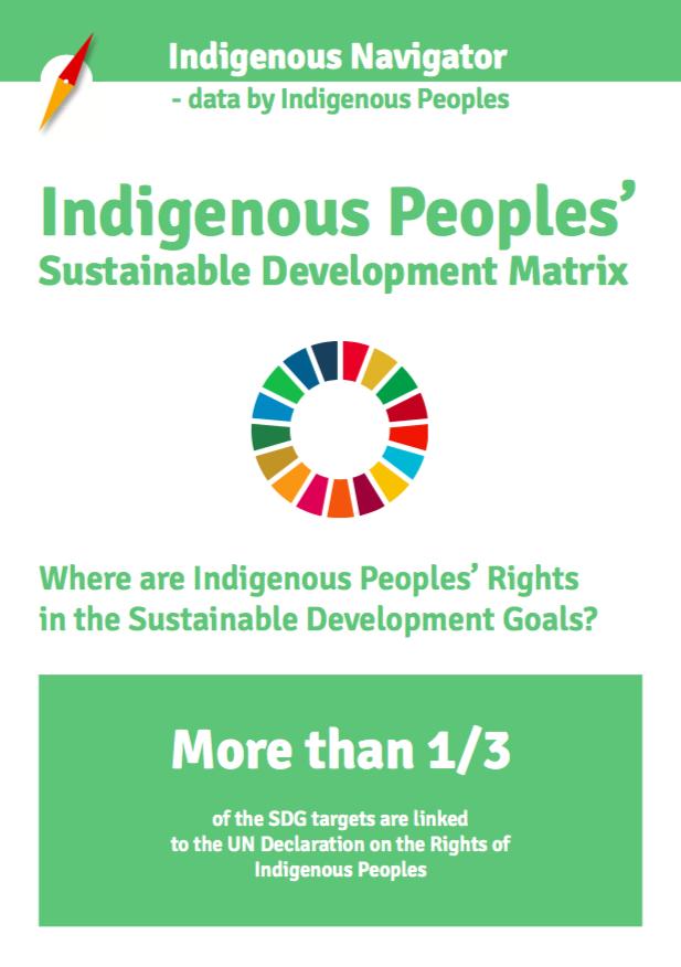 Indigenous Peoples' Sustainable Development Matrix